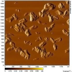 Titanium dioxide nanorods, 1wt.% aqueous solution